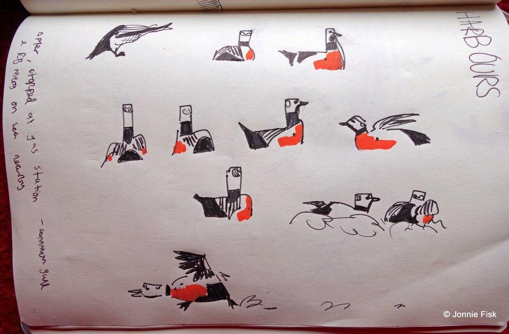 Steller´s Eiders by Jonnie Fisk on Gullfest 2014 March.jpg