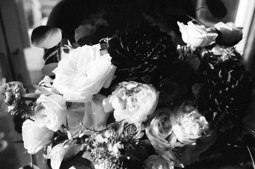Mark & Alexandria - Film-3.jpg