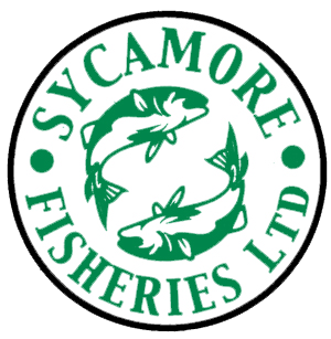 Sycamore Fisheries