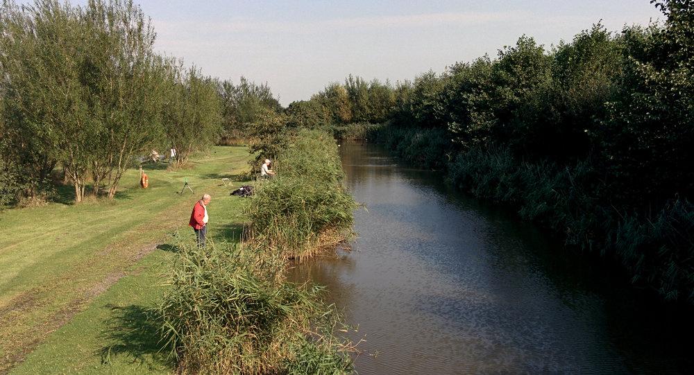 Joe's Canal, October 2016