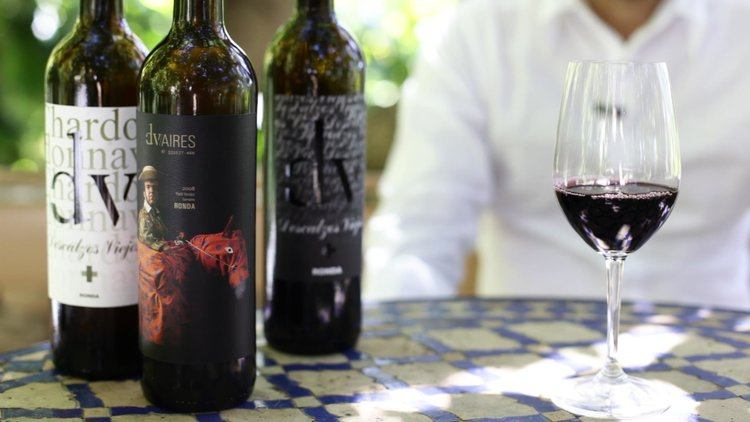 Descalzos Viejos one of the local wineries that can be visited from our luxury villa rental in Ronda, Andalucia, Spain