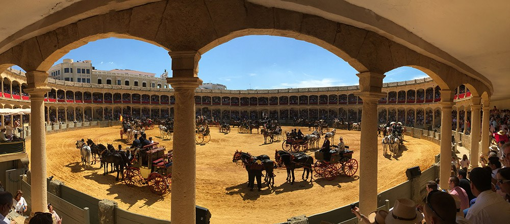 Spanish horse display at historic bullring, close to our luxury villa rental in Ronda, Andalucia, Spain