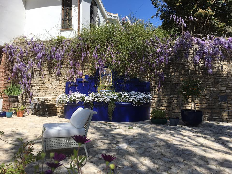 Wonderful wisteria at La Cazalla