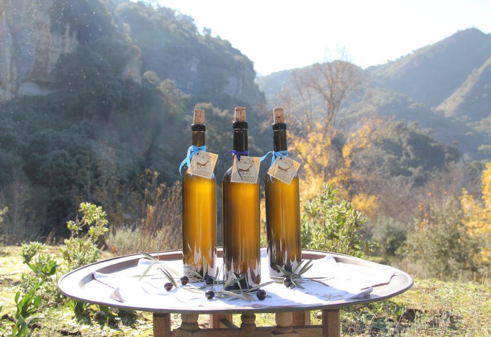Organic+extra+virgin+olive+oil+luxury+villa+rental+Ronda+Andalucia+Spain