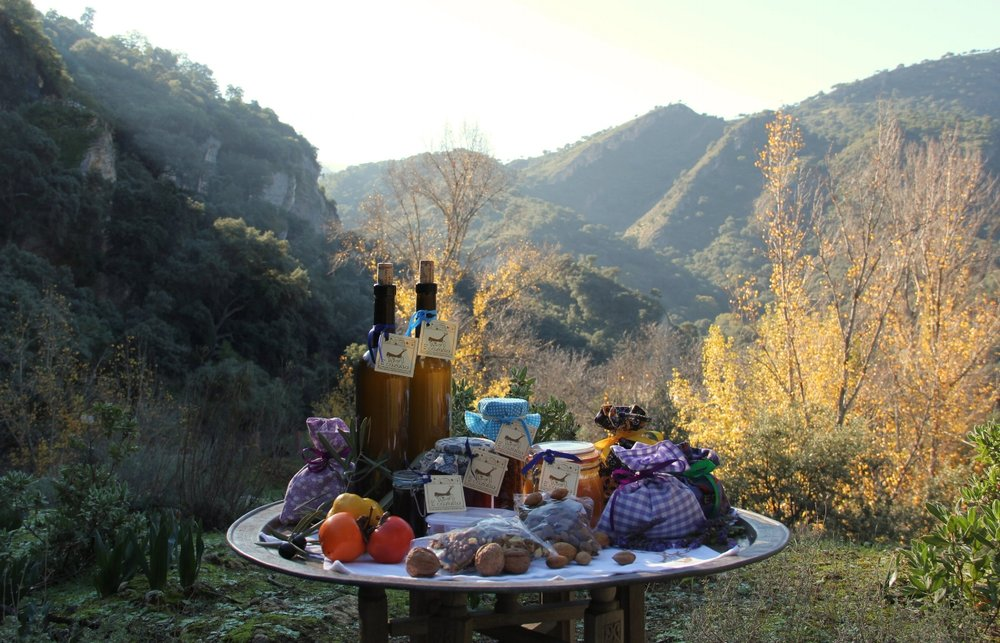 Gifts for our guests: our organic extra virgin olive oil, jams and chutneys made from fruit growing on the property, and walnuts and almonds from our own trees.