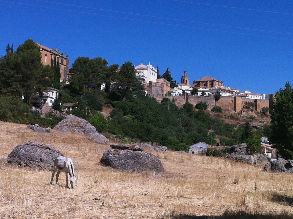 hiking_in_ronda_spain