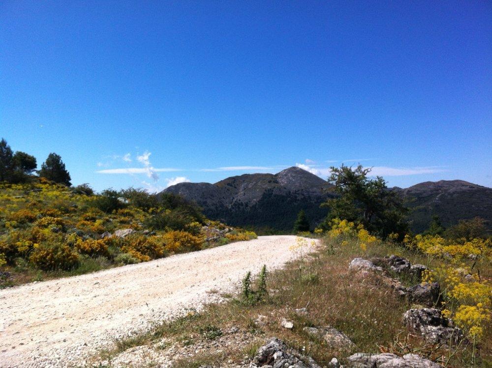 sierra_de_las_nieves.jpg