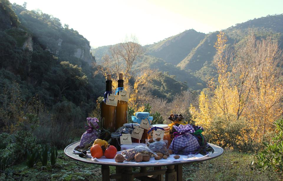 organic_homegrown_produce_yoga_retreat_andalucia_spain