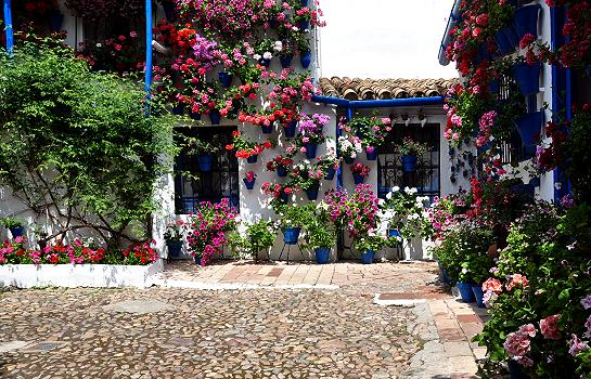 may_in_andalucia