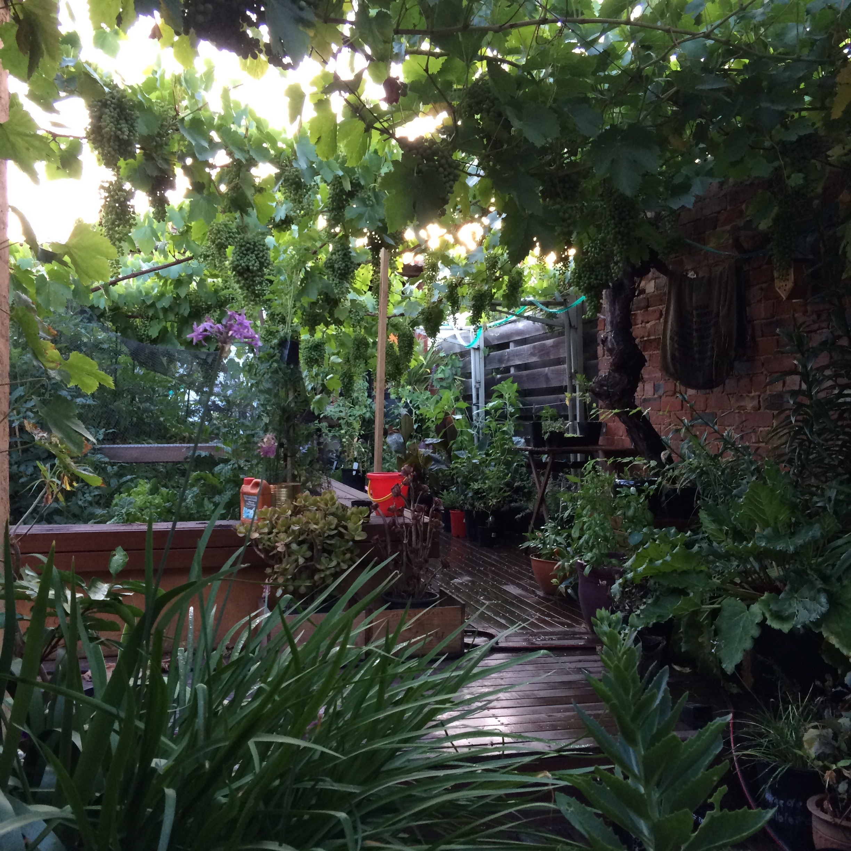 the northwest garden manifesto create restore and maintain a sustainable yard