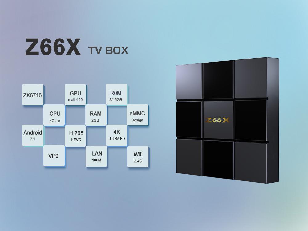 Z66X Z2 (26).jpg