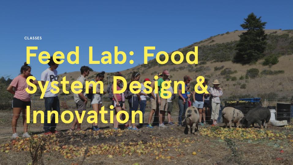FEED Lab