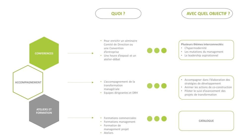 schema organisation.jpg