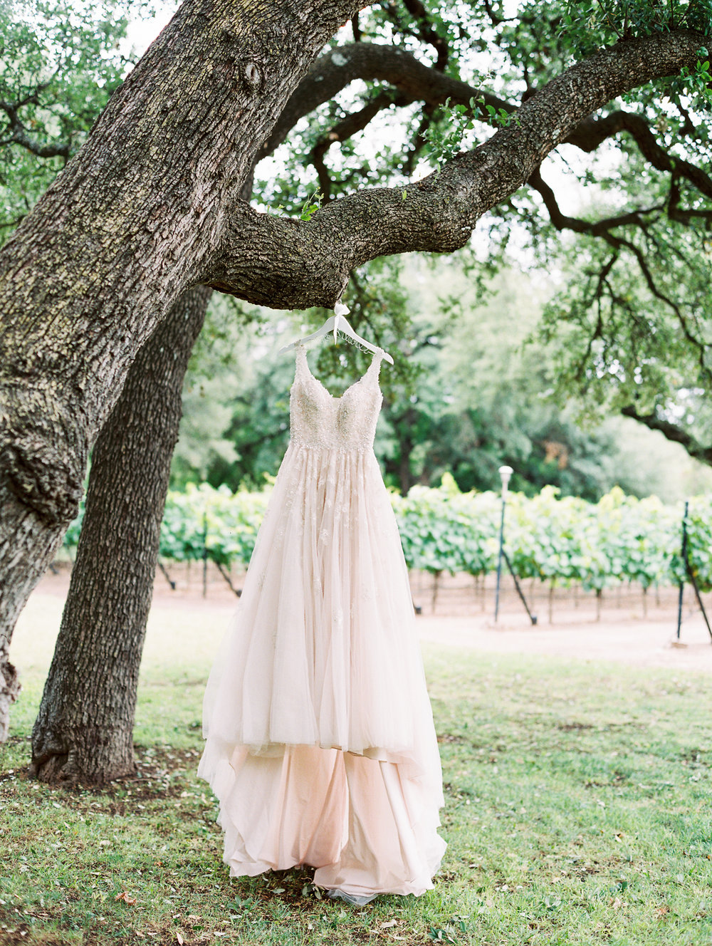 Elegant Spring Vineyard Wedding | Film Wedding Photographer | Austin Wedding Photographer | Stunning Spring Wedding Gown by Stella York | Britni Dean Photography // britnidean.com