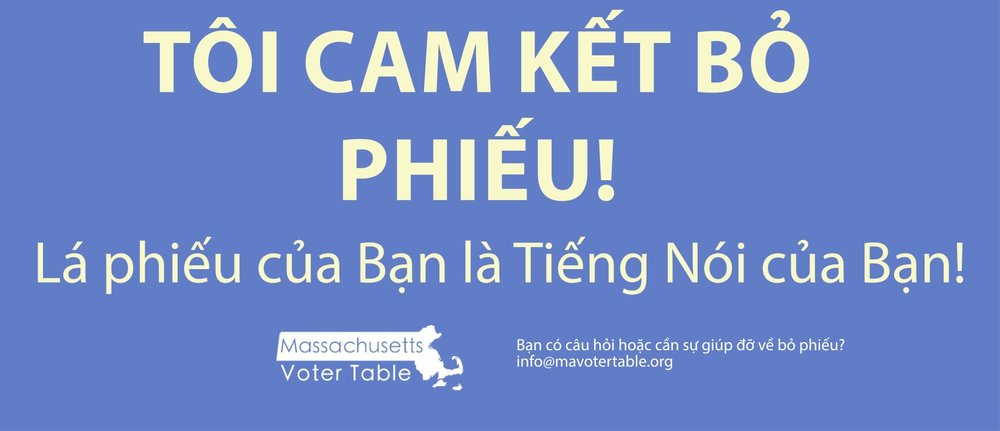 Pledge form in Vietnamese