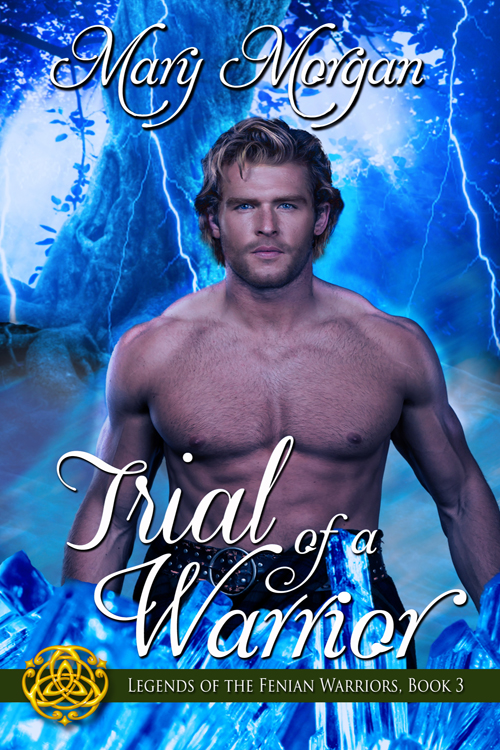 Trial of a Warrior - A warrior sentenced to die.On trial for breaking a supreme Fae law, Fenian Warrior, Liam MacGregor has no regrets. He is prepared to accept his sentence—even if it means his death. However, freedom comes in an unexpected manner, and brings with it certain dangers as he travels through the Veil of Ages.A princess honor-bound to remain hidden.Princess Abela might be a priestess and the daughter of royalty, but that doesn't prevent her from doing the unimaginable. She sacrifices duty and honor to set free the man who captured her heart so many years ago. No matter the severity of his crimes, she cannot let Liam die.A rescue that will bring about a war and divide a kingdom!In their quest to secure a treaty to forestall Liam's death sentence, they must fight their desires for one another, as well as the Fenian Warriors sent to capture them.