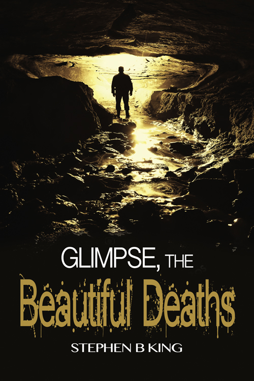The second book in the Glimpse series  releases April 10th .