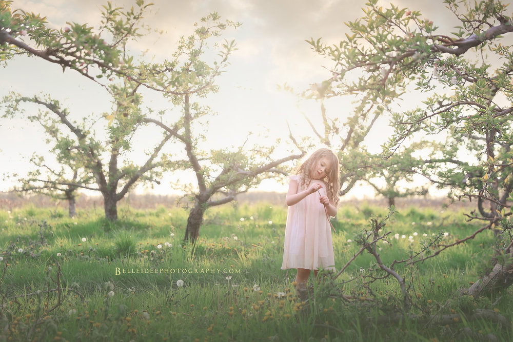 child photographer in Orchard Park, NY