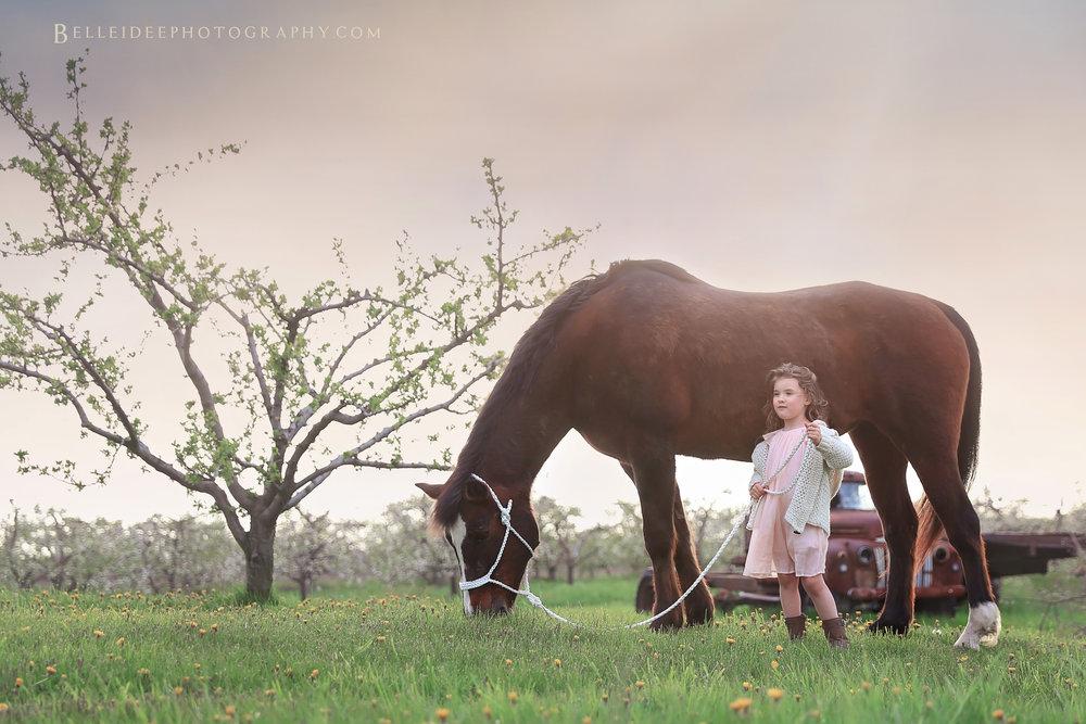 cattaraugus county photographer