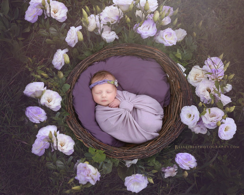 best newborn photographer in buffalo, ny