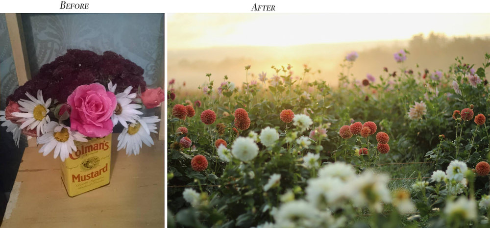 A before/after from a beginner camera class graduate.