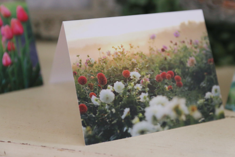 Floral Note Cards -