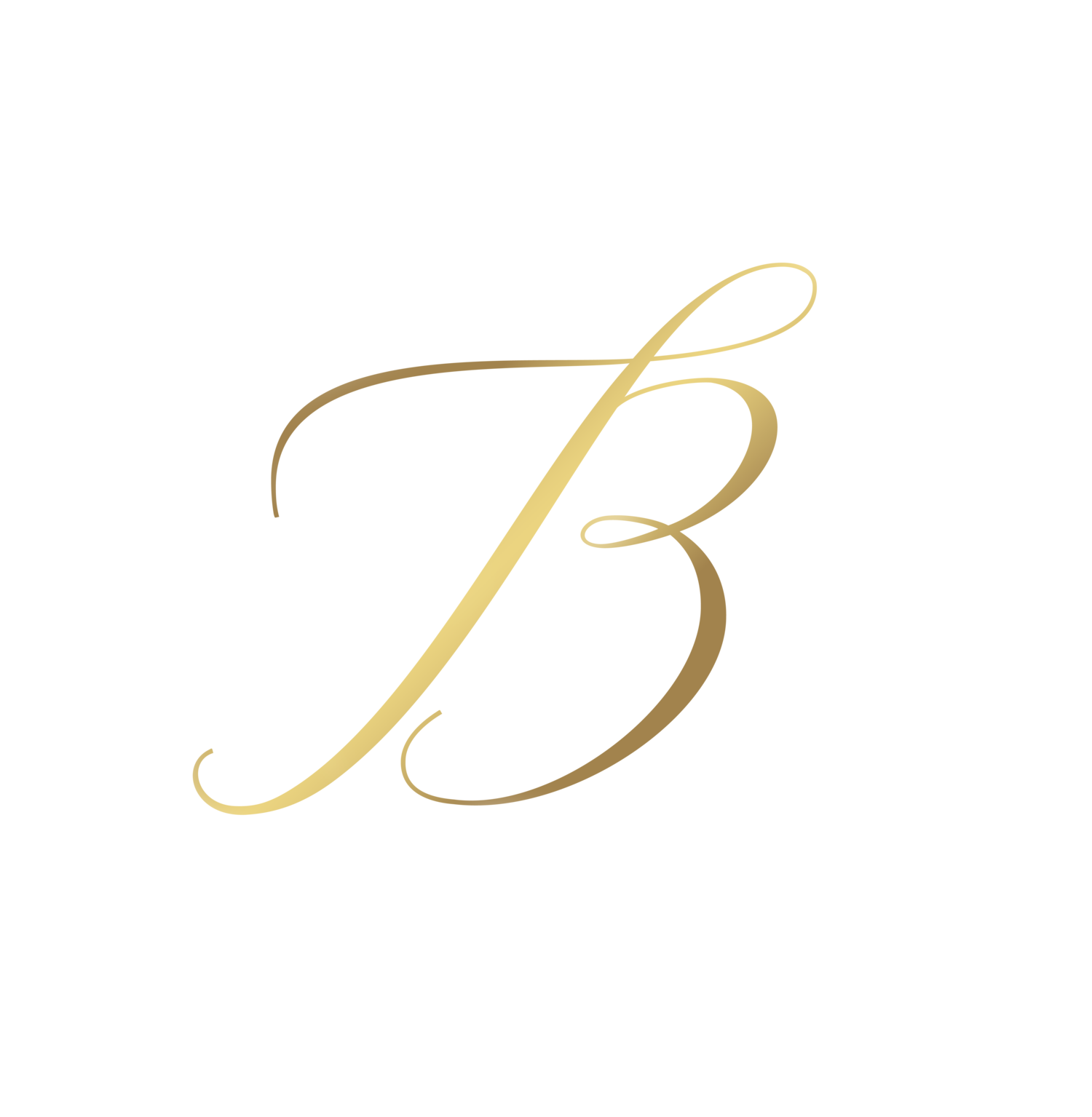 Belle Idee Photography