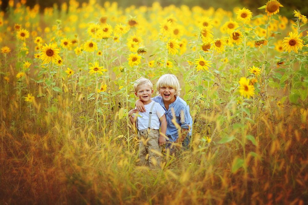 Sunflower photo sessions in Buffalo, NY