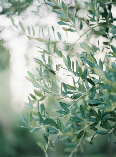 LoveSession_Italy_0001.jpg