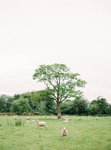 PearlGordiva_CromCastle_Wedding_Ireland__0041.jpg