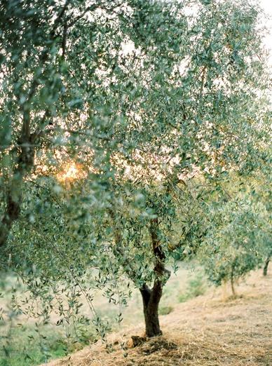 Tuscany_Destination_wedding_peachesandmint__0002.jpg