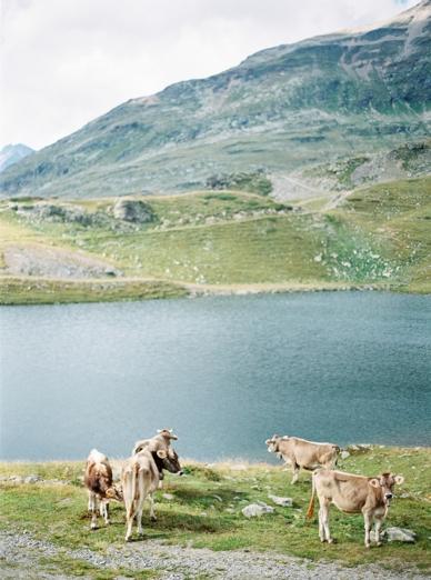 Schweiz-Hochzeit_0002.jpg