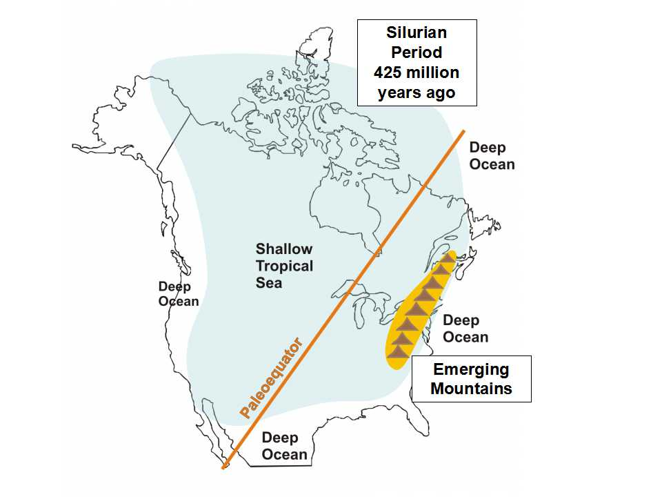 This cartoon shows the location of the equator and the extent of of a warm ocean that covered all of what we now call Ontario about 425 million years ago, during a time called the  Silurian Period . You may be surprised to learn that a very long time ago, Ontario was located along the equator! The geological process called continental drift is responsible for Ontario's move from the tropical equatorial area to our present geographic location much further north. Image modified after Coniglio et al., 2006: Manitoulin Rocks!).
