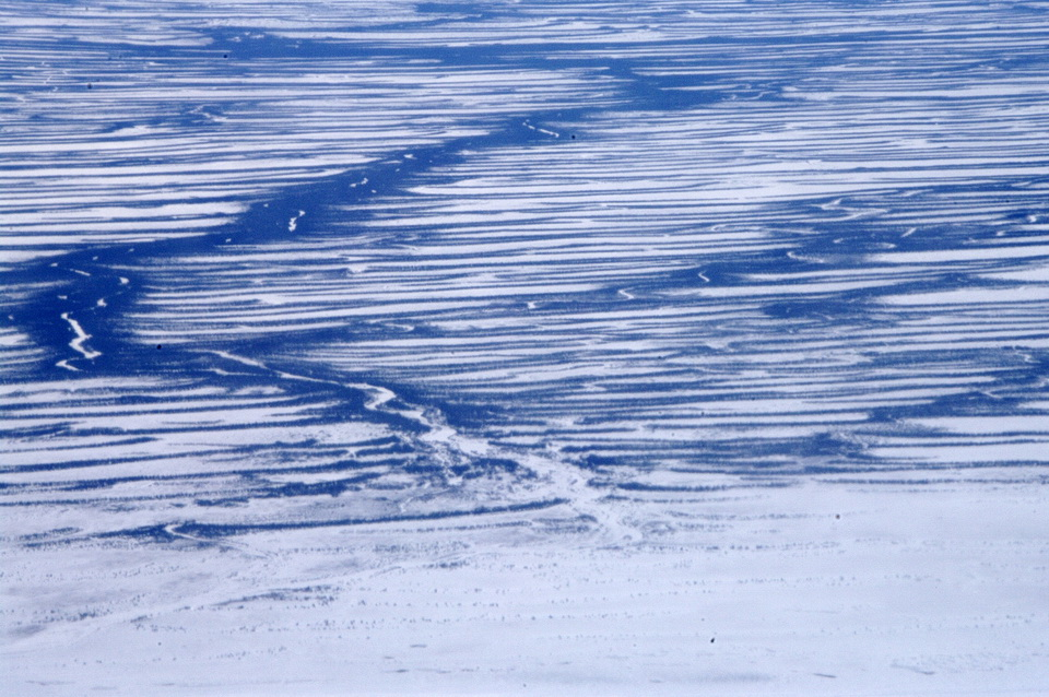 This image shows raised beaches (black horizontal lines) that formed when the land started to rise at the end of the ice age. The raised beaches mark the location of the former shoreline with the ancient Tyrrell Sea. Two other features are present in the photo: a) the present day shoreline with Hudson Bay occurs as the ice-covered, white area at the bottom of the photo; and b) a modern river snakes across the landscape and cuts the raised beaches. Photo by Andy Fyon, northeast of Fort Severn, March 31, 2012.