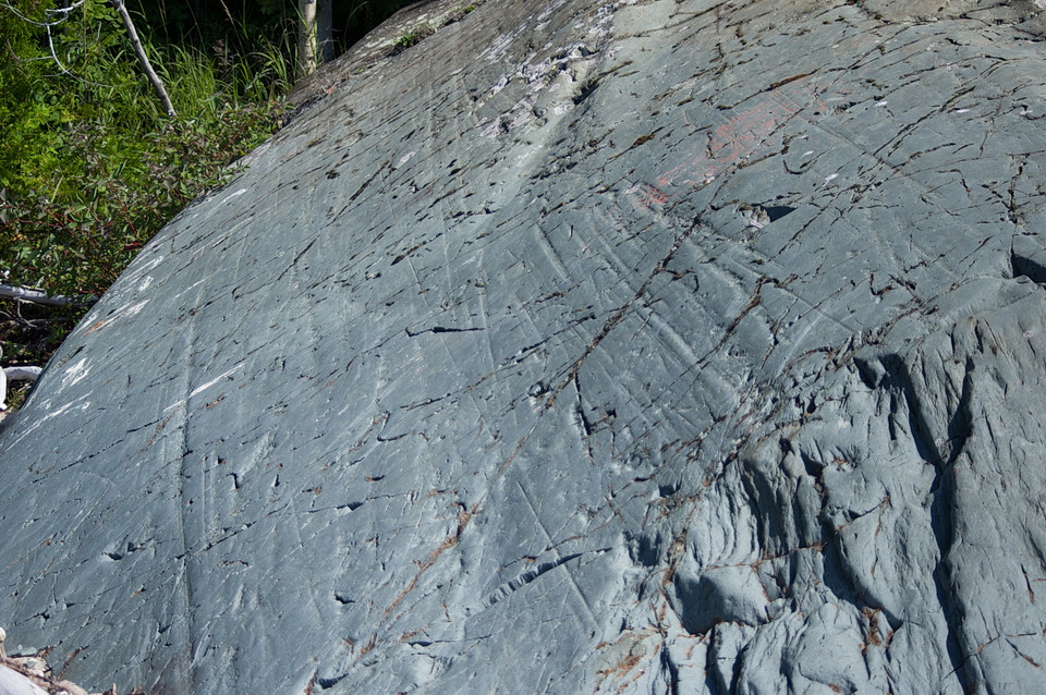 Figure 1: Long parallel scratches on the surface of this rock are called glacial striations. They were created by rock debris that were dragged along at the bottom of a glacier. The rock pieces abraded, or scratched, the surface of the rock outcrop. Photo by Andy Fyon, Michipicoten Harbour, Aug 16/18.