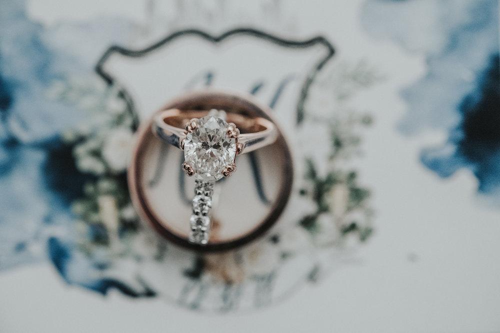 Pickering Wedding Chicago Ambassador Photography-46.jpg