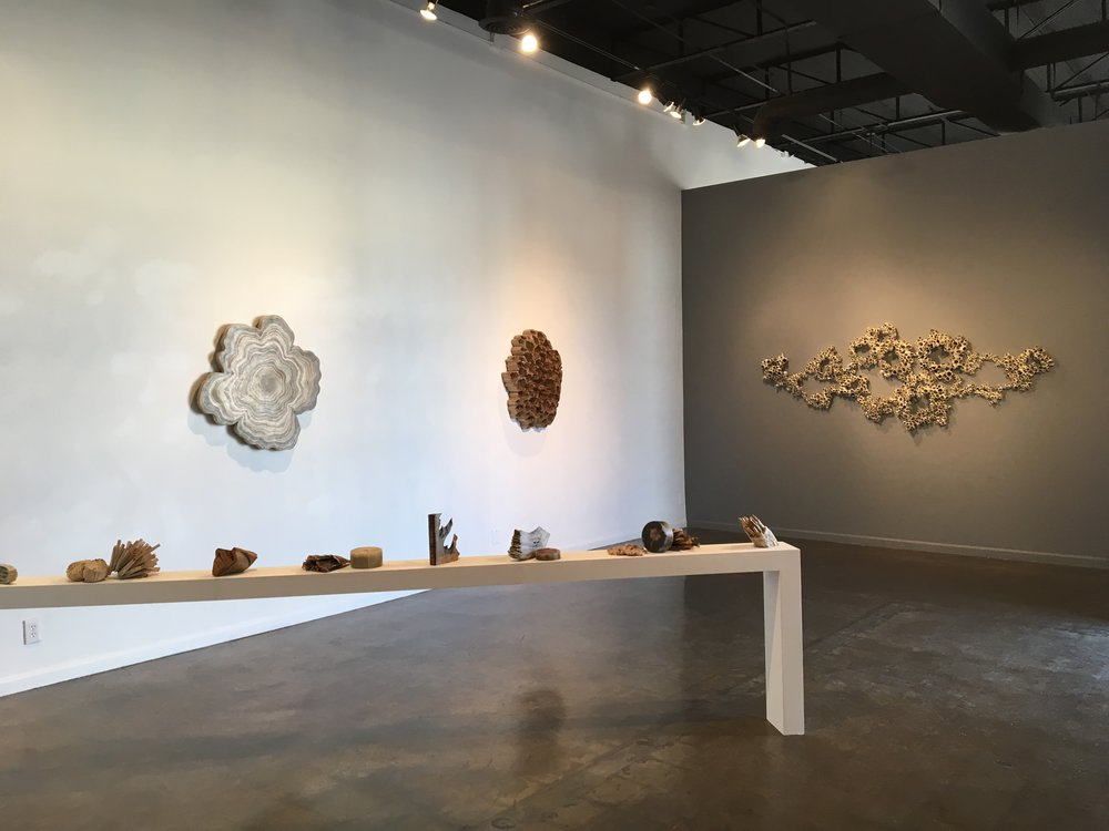 States of Matter includes a 16 foot long shelf with Reading Our Remains book sculptures, and wall pieces (left to right) Circulation formed from strips of books and wax, Colony, made of pencils, and Cirripedia, an installation of book pages and plaster.