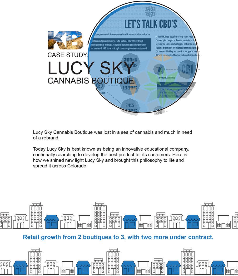 LucySkyCaseStudy-1.jpg