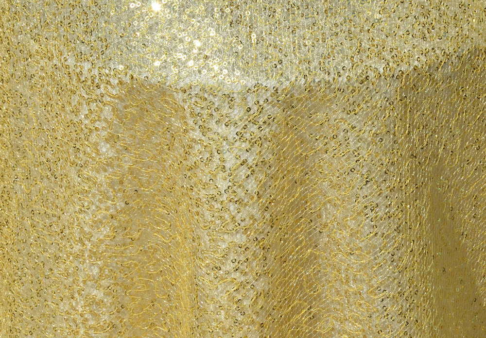 Gold Net Sequin Overlay