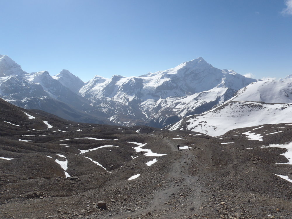 The long climb to the Thurong La (5416m) pass.