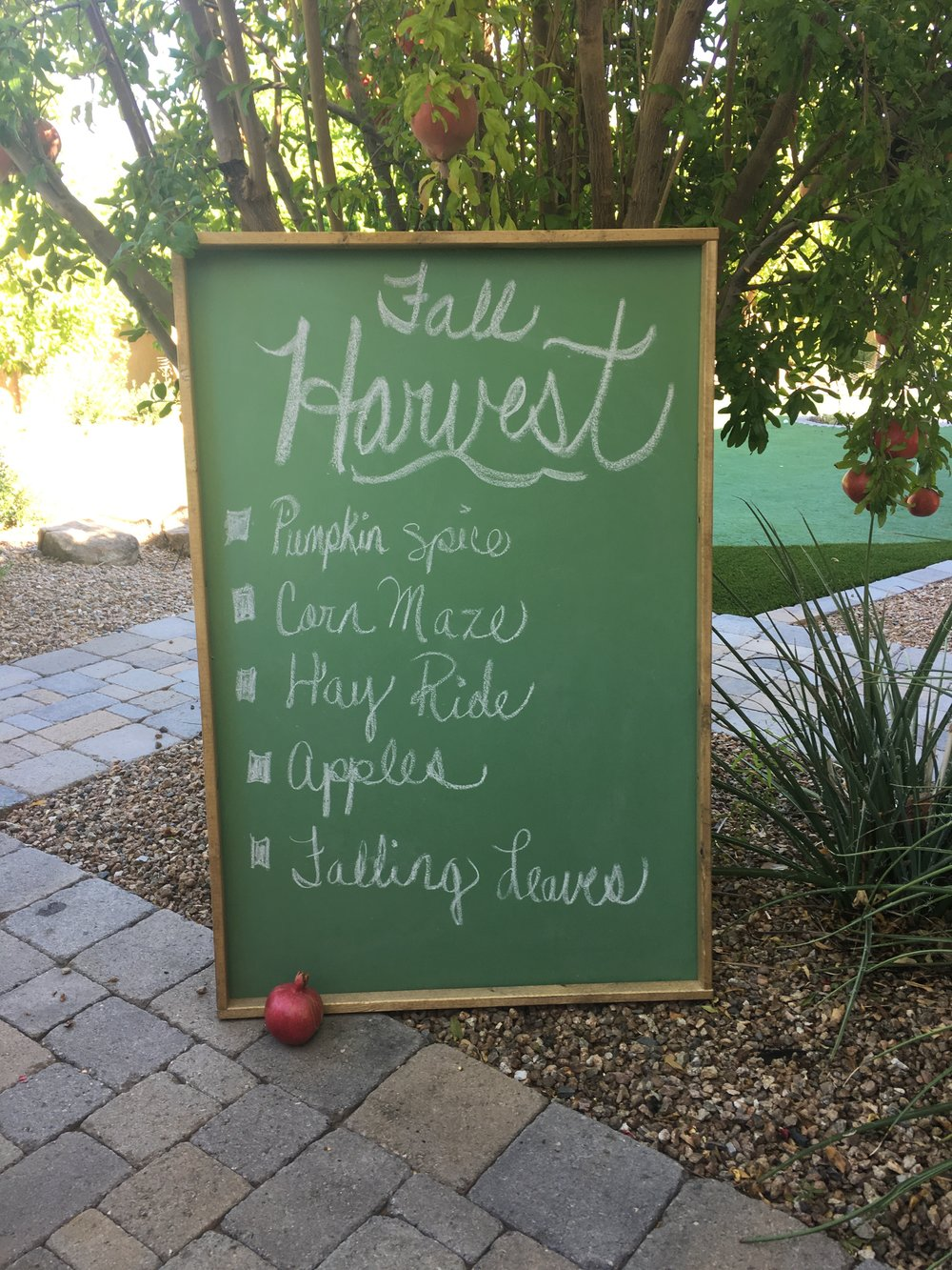 Added to the Chalkboard Collection: huge vintage chalkboard (click on this or any other image to open full size photo)