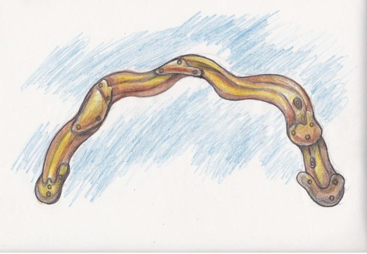 Aqurbane sketch back