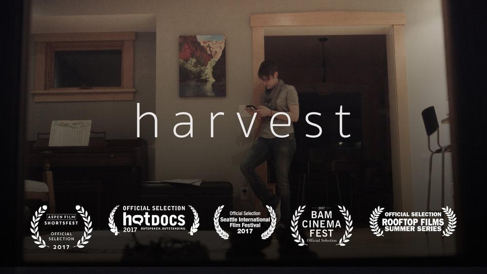 Harvest still.jpg