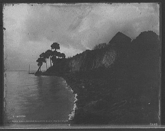 "Jackson, William Henry, c. 1898, ""Shell mound Barker's Bluff, Indian River"",    Library of Congress, Prints and Photographs Division, Detroit Publishing Company                                                           Collection.           Kroegel homestead on Barker's Bluff, a huge ""Ais"" Indian Shell Mound."