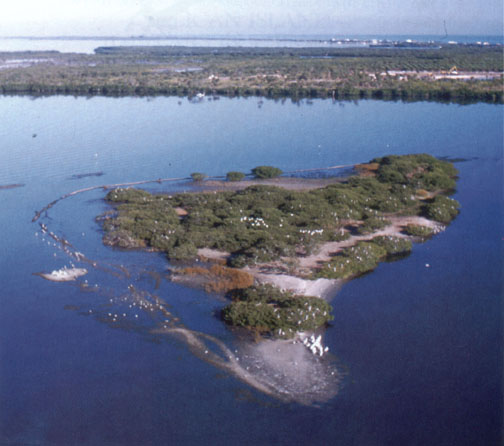 An aerial view of Pelican Island, which sits in the Indian River between the         Sebastian Inlet and the Wabasso Causeway.  The 2.5-acre island is birthplace of                                  the National Wildlife Refuge System,