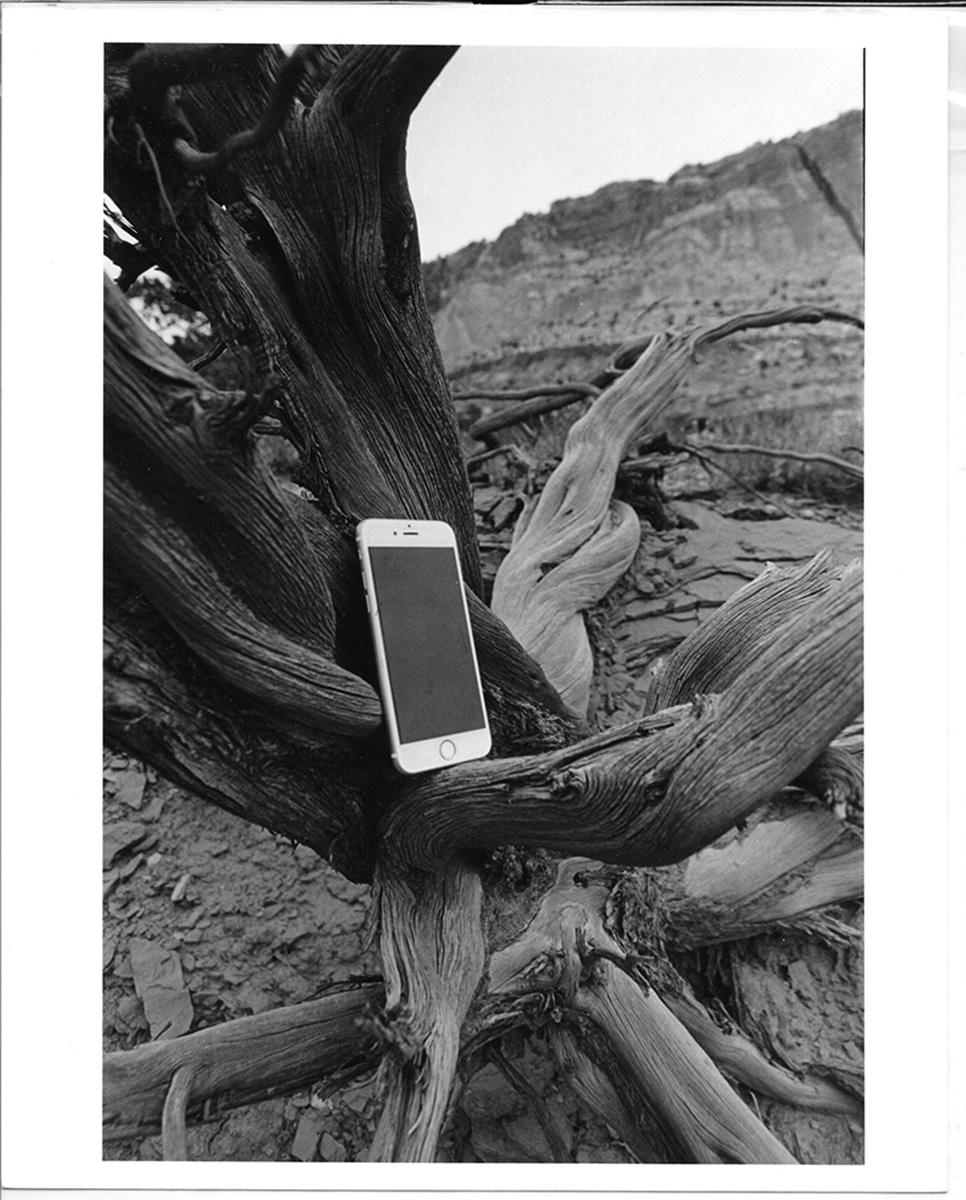 05_Driftwood & Black Mirror_Kurlan,Cali .jpeg