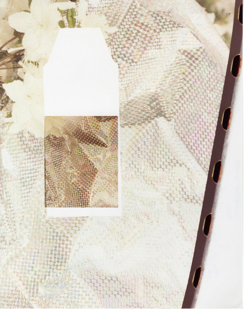 Prism Bag 35mm exposed as Fp-100C , 2016, Chromogenic print