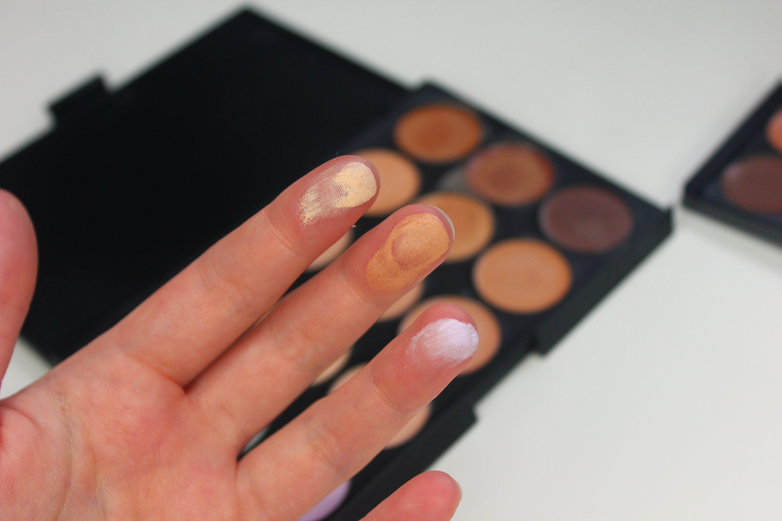 Coastal Scents Concealer Palette swatches