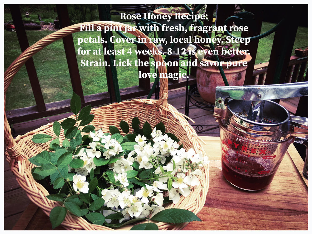 rose honey recipe.jpg