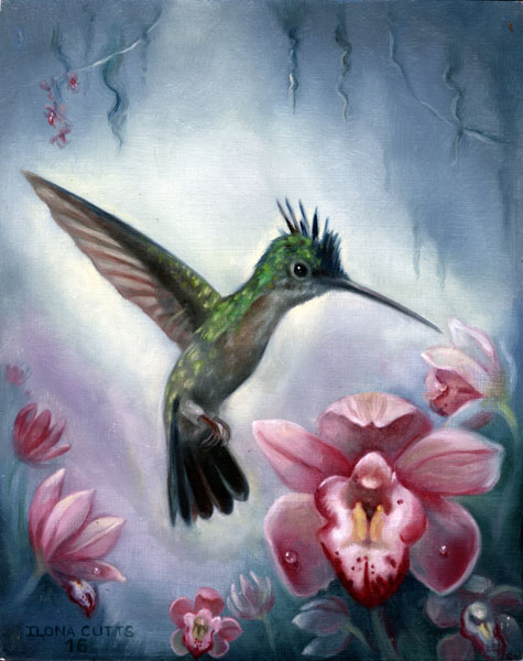 Green Colibri 2016
